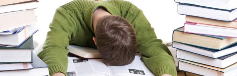 Как написать отчет по преддипломной практике?